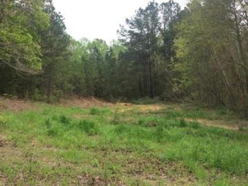 Shaded Lot For Home Site For Sale : Columbus : Lowndes County : Mississippi