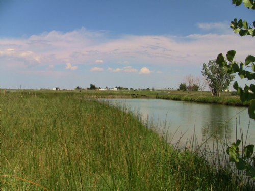 Blue Sky Farms And Development : Windsor : Weld County : Colorado