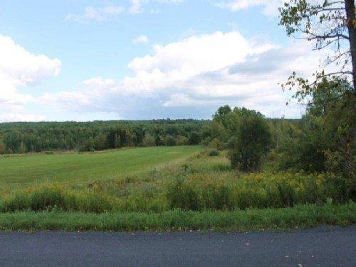 27 Ac. Farmland W/ Owner Financing : Boonville : Oneida County : New York