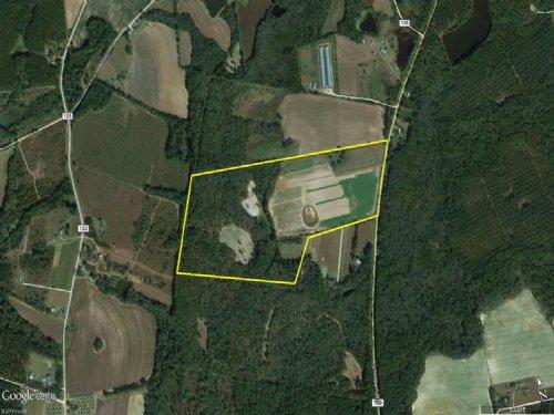 Hillside Farm : Cobbtown : Tattnall County : Georgia