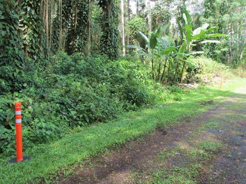 1/4 Acre Nanawale Estates, Hibiscus : Holualoa : Hawaii County : Hawaii
