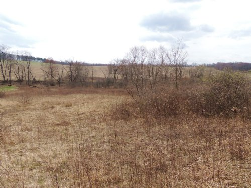 Sapps Run - 10 Acres : Howard : Knox County : Ohio
