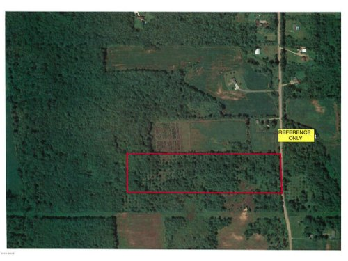 Mostly Wooded 40 Acres : Fennville : Allegan County : Michigan