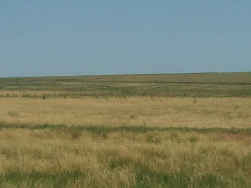 Crp Land : Carlton : Prowers County : Colorado