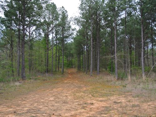 213 Acres In Union County In New AL : New Albany : Union County : Mississippi