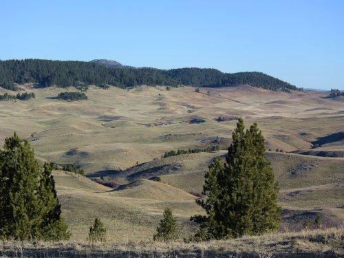 Newcastle Green Mountain : Newcastle : Weston County : Wyoming