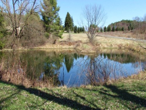 40 Acres With Hunting Sheds Pond : Windsor : Broome County : New York