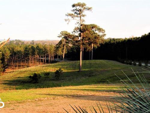 Tom Mann Eufaula Estate : Eufaula : Barbour County : Alabama
