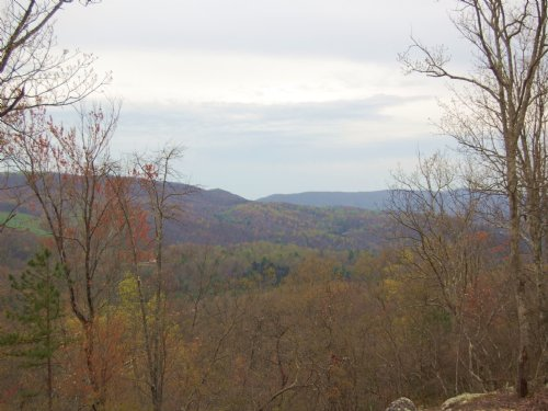 Cooke Knob Tract 1 : Harriman : Morgan County : Tennessee