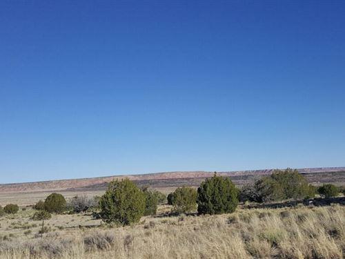 1.25 Acres In Saint Johns, AZ : Saint Johns : Apache County : Arizona