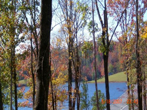 18+/- Ac Waterfront On Yates Lake : East Tallassee : Tallapoosa County : Alabama