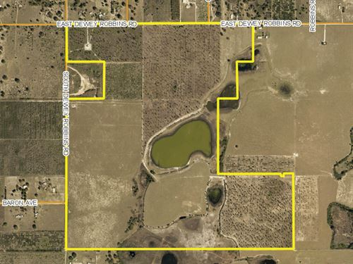 286 Ac Residential Development Land : Clermont : Lake County : Florida