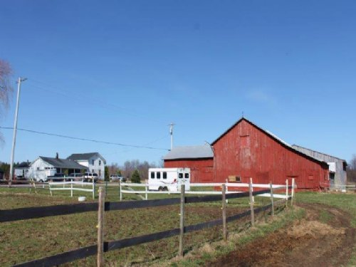 Horse Farm With Indoor Riding Arena : Mexico : Oswego County : New York