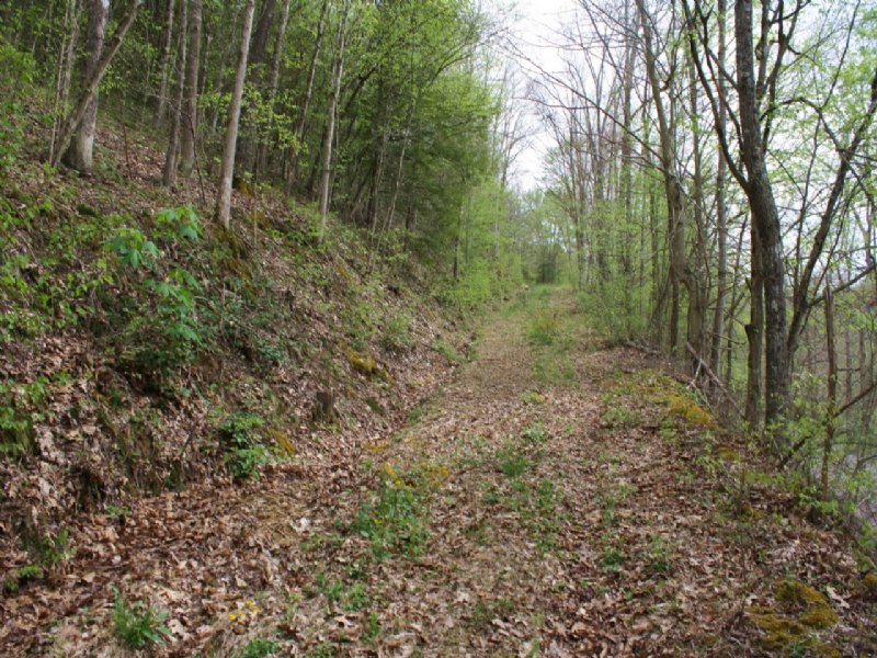 Land - Great for Building a House : Ivydale : Clay County : West Virginia