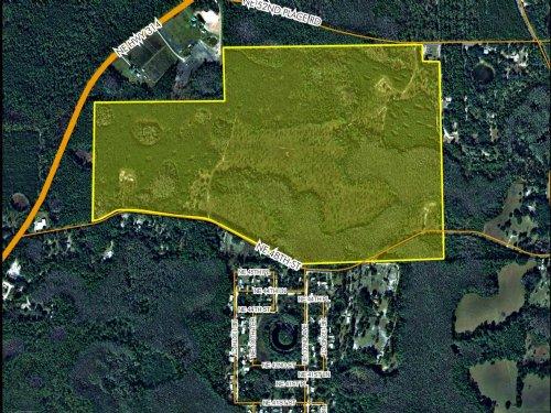 208 Acres Silver Springs : Silver Springs : Marion County : Florida