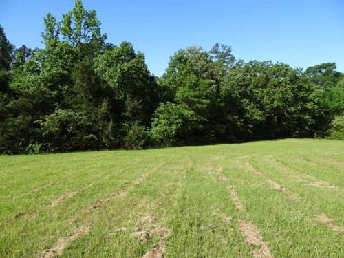 5.1 Ml Acre Homesite : Bigelow : Perry County : Arkansas