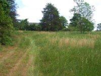 Homesite / Farm / Recreational : Lula : Banks County : Georgia