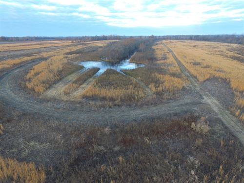 120 Ac Duck And Deer Hunting Land : Dundee : Tunica County : Mississippi