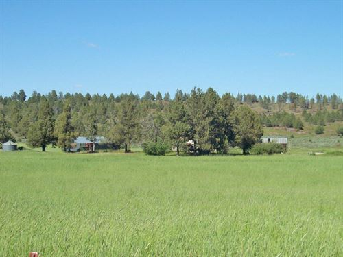 Gorgeous Productive Valley Farm : Bonanza : Klamath County : Oregon