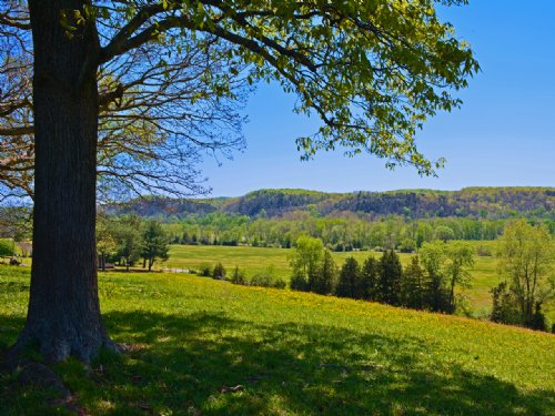 Rocky Hill Farm : Wingina : Nelson County : Virginia
