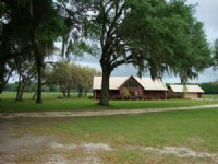Log Home On 157 Acres 771854 : Old Town : Dixie County : Florida