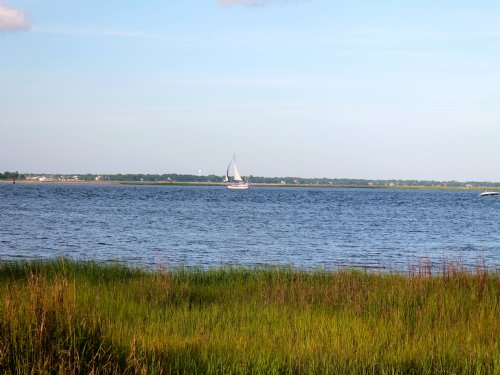 Premier Carolina Coastal Property : Belhaven : Beaufort County : North Carolina