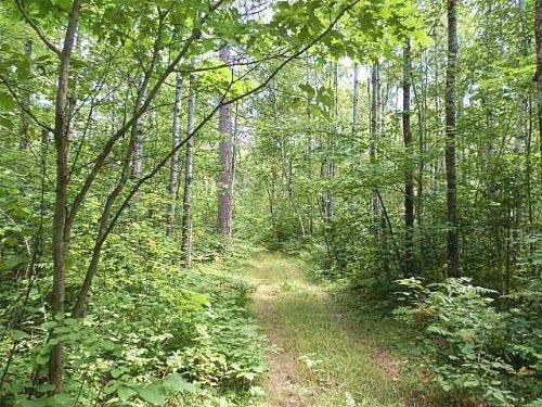 Mls 157139 - Lots 5&6 Curtis Ln : Minocqua : Oneida County : Wisconsin