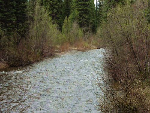 5 Acres On West Fork Of Yaak River : Yaak : Lincoln County : Montana
