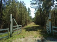 Development, Investment Property : Bolivia : Brunswick County : North Carolina