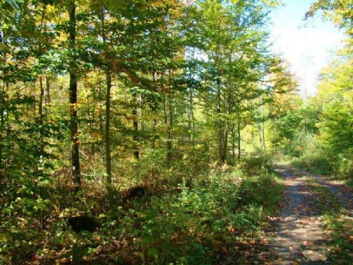 13 Acres On Sandy Creek Gorge : Lorraine : Jefferson County : New York