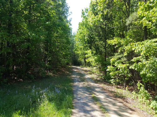 9 Acres : Chatham : Pittsylvania County : Virginia