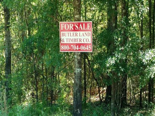 Huggins Tract : Ozark : Dale County : Alabama