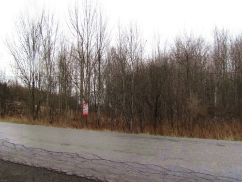 Wooded Building Lot Near Oneonta : Laurens : Otsego County : New York