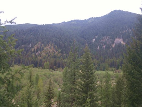 A Slice Of Wilderness : Trout Creek : Sanders County : Montana