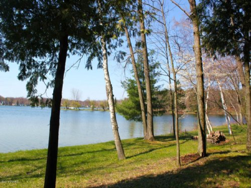 Waterfront Lot On Horsehead Lake : Mecosta : Michigan