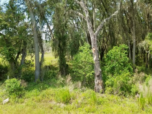 4.5 Beautiful Acres On A Paved Rd. : Brooksville : Hernando County : Florida