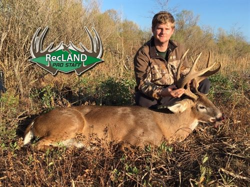 452 Ac - Excellent Deer Hunting, Wr : Waverly : Madison Parish : Louisiana