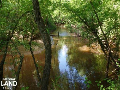 Blackwater Hills Hunting Preserve : Porterville : Kemper County : Mississippi