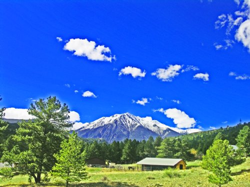 235069 - Perfect Spot To Build Your : Salida : Chaffee County : Colorado