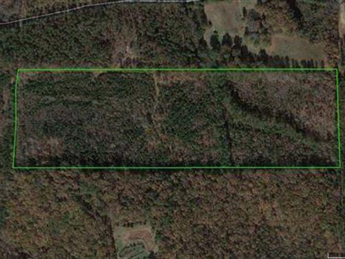 Ccc Road Tract 9537 : Kingston : Bartow County : Georgia