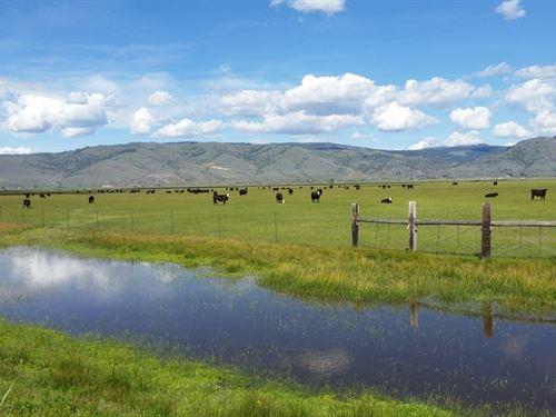 Quality Pasture Ranch, Lake Front : Lakeview : Lake County : Oregon