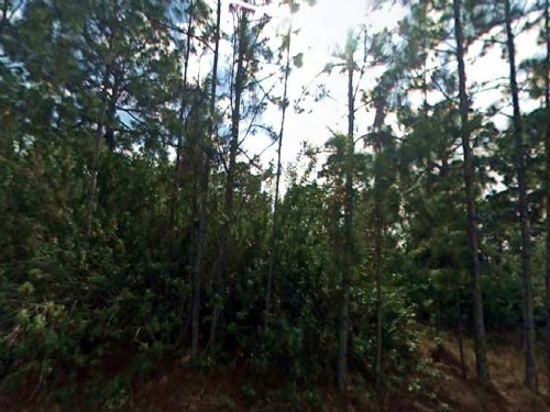 Vacant 0.25 Acre Land : Lehigh Acres : Lee County : Florida
