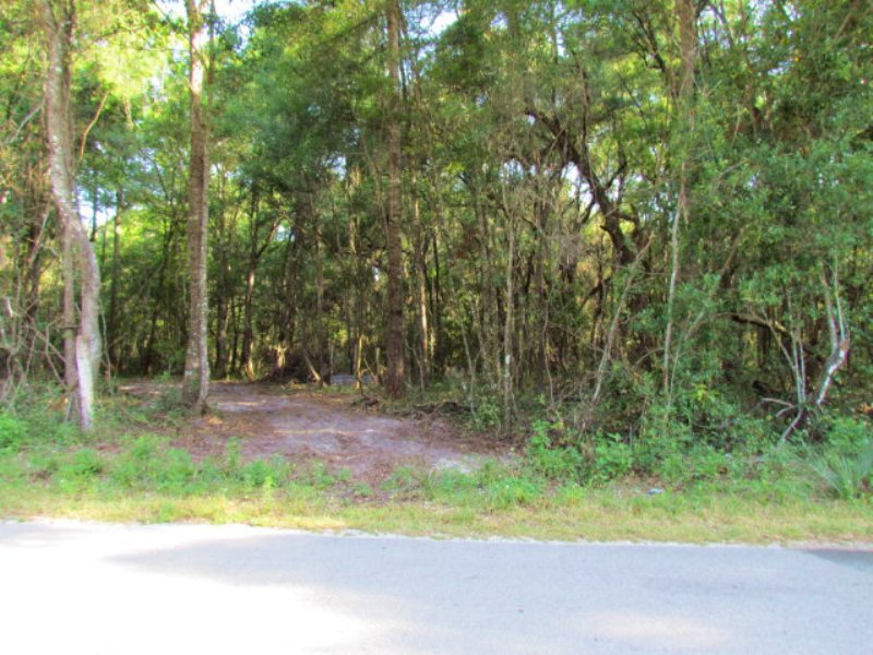 4.15 Wooded Corner Lot 771962 : Old Town : Dixie County : Florida
