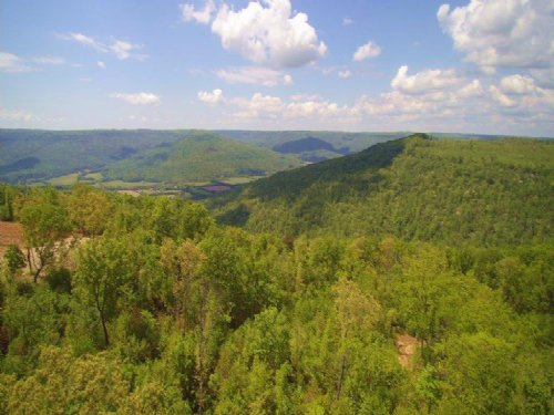 40+/- Acres With Beautiful Views : Sewanee : Marion County : Tennessee