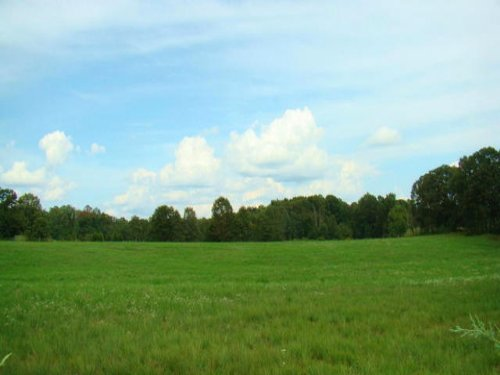 59 Acres With 5 Ponds : Mountain View : Howell County : Missouri