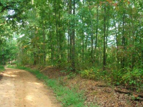 5.67 Acre Lot 16 Sugartree Falls : Waynesboro : Wayne County : Tennessee