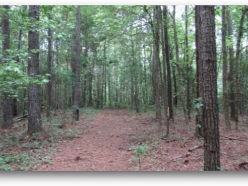 23 Acres In Choctaw, County : Ackerman : Choctaw County : Mississippi