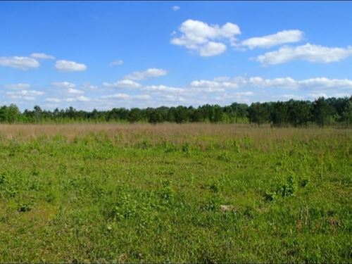 120 Acres In Oktibbeha, County : Starkville : Oktibbeha County : Mississippi