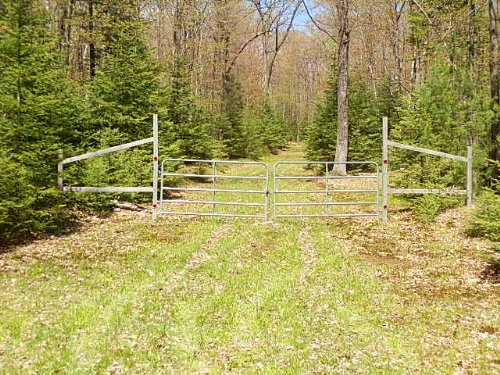 20 Wooded Acres : Hazelhurst : Oneida County : Wisconsin