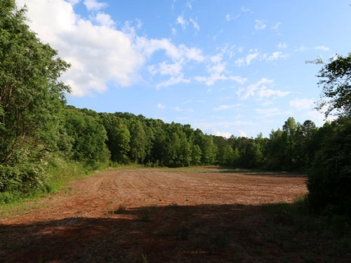 83+/- Acres Farm & Hunting Land : Sycamore : Talladega County : Alabama